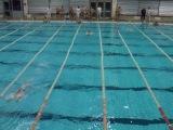 Атлантида плывет эстафету комплекс. КПИ по плаванью.